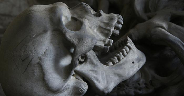 Schädel Totenkopf Mensch Paderborn