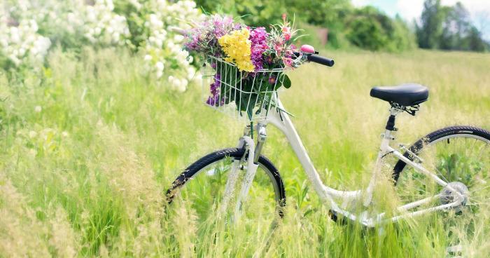 Fahrrad Paderborn