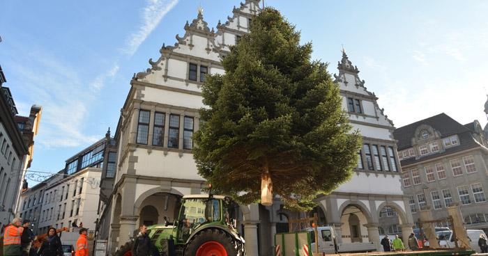 Weihnachtsbaum Paderborn 2016